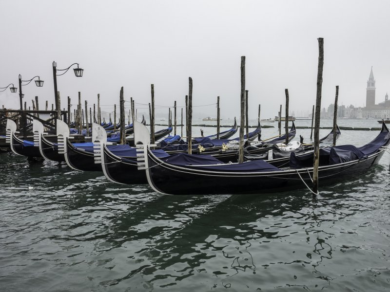 Fog in Venice- Gondolas