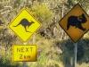 Koala-Kangaroo signs