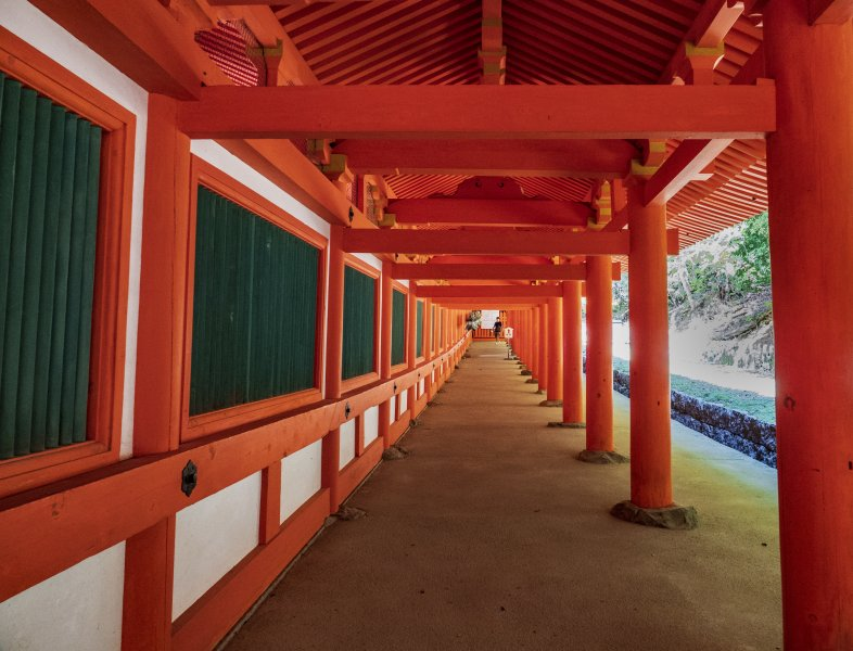 Kasuga Shrine Torii