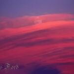 Moon Behind Pink Clouds