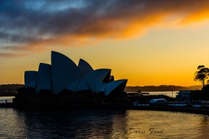 Opera-House-Sunrise