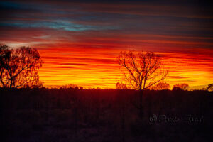 Sunrise-at-Uluru-Landscape